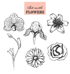 Set with hand drawn flowers vector