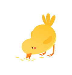 Cute baby chicken pecking grain funny cartoon vector