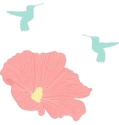 Hummingbird colibri vector