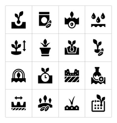 Set icons of seed and seedling vector image