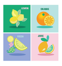 set of four icon lemons and orange vector image