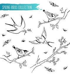 Birds sketch collection vector image