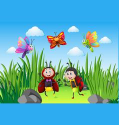 Ladybugs and butterflies in garden vector