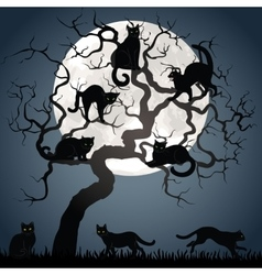 Black cats on tree vector