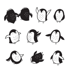 Collection of arctic penguins in cartoon style vector image