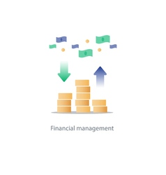 Finances and investment management budget planning vector
