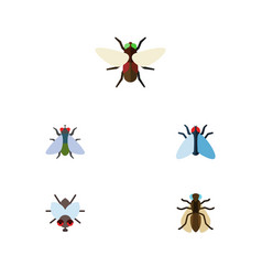 Flat icon housefly set of mosquito buzz fly and vector