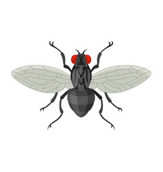 Home fly in cartoon style vector