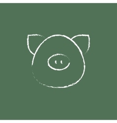 Pig head icon drawn in chalk vector image vector image