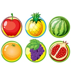 Logo design with fresh fruits vector image