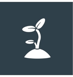 Sprout icon vector