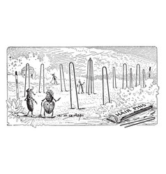 Ants playing croquet with hair pins vintage vector
