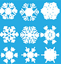 Collection of snowflake designs vector image vector image