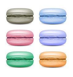 realistic macarons set detailed colourful vector image
