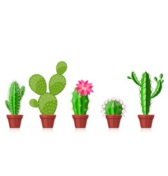 set of cactuses vector image vector image