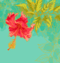 Hibiscus flower on toned background vector