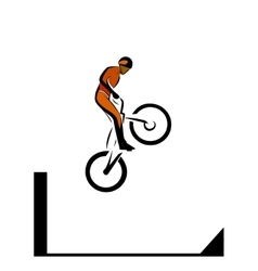 Trial biker vector image