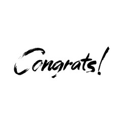 congrats hand written lettering for vector image vector image