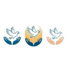 Dove bird carrying olive branch in beak as a peace vector image vector image