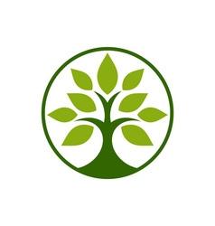 Tobacco-tree-380x400 vector