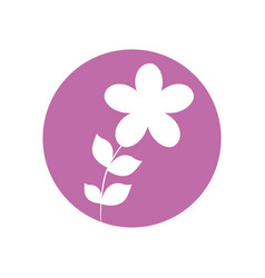 Flower botanical natural icon vector