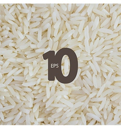 rice background vector image