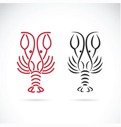 lobster shrimp design on white background aquatic vector image