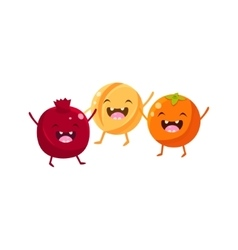 Pomegranate melon and orange cartoon friends vector