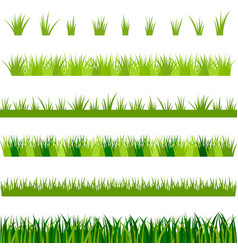 Collection of green grass vector