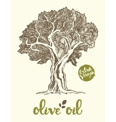 Drawn olive tree label oil vector
