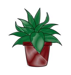 Pot plant ornate natural decoration image vector