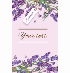 Lavender natural cosmetics banner vector