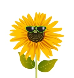 Sunflower in glasses vector