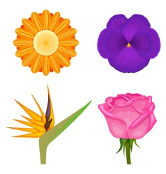 Solid colors flowers set vector