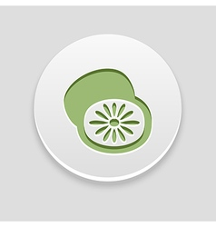 Kiwi icon fruit vector