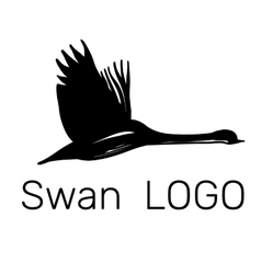 Flying black swans logo design vector