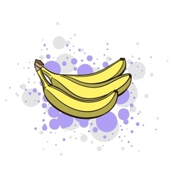 Bright juicy banana vector
