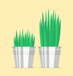 Plant in zinc pot flat icon vector