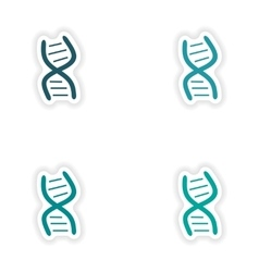 Assembly realistic sticker design on paper dna vector
