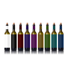 Various color bottles with red wine and glass vector