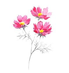 Watercolor bouquet of pink summer flowers vector image