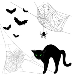 webs black cat and bats vector image