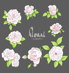 Pink roses on a dark background vector