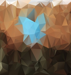 Brown blue polygonal triangular pattern background vector
