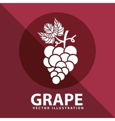 Grape icon design vector