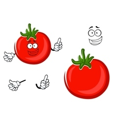 Red ripe tomato vegetable character vector