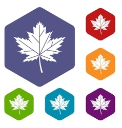 Maple leaf icons set vector