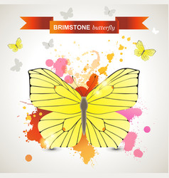 Brimstone butterfly vector