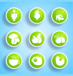 Healthy food icons collection vector