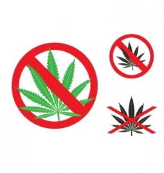 hemp is forbidden vector image vector image